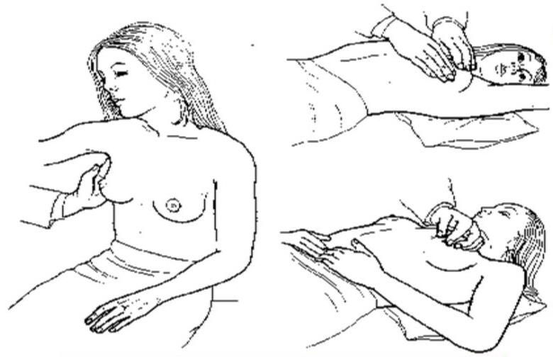 Palpation des seins